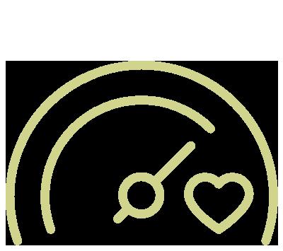 guage icon